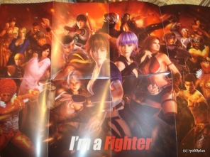 DOA5 special poster