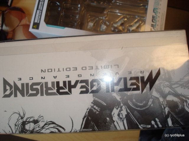 Metal Gear Rising Revengenace limited
