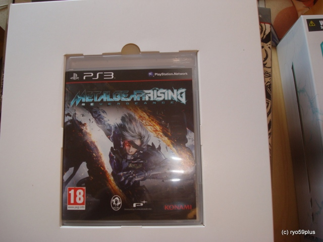 Metal Gear Rising Revengenace limited the game
