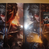 nouvelle arrivage: Metal Gear Rising  Guide US