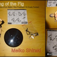 [Special]Unboxing Meiko Shiraki  Chairman FIG +18ans